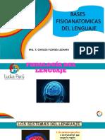 BASES FISIOANATOMICAS DEL LENGUAJE - 2.pdf