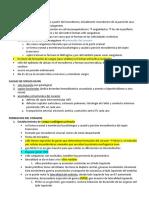 Embriología Cardiovascular Parcial 2
