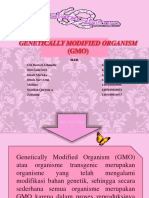 Genetically Modified Organism (GMO) KELOMPOK