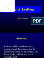 Scrotal Swelling Fadhly
