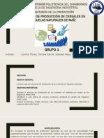 DIAPOSITIVAS-PRODUCCION