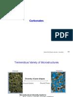 7. Carbonates