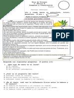Guía de proceso 2 B