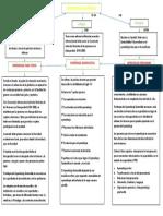 ORGANIZADOR GRAFICO TAREA.docx