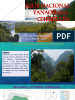 Yanachaga - Chemillén.pptx