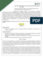 Situación Actual Microbasurales Comuna de Frutillar-REV