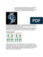 GENÉTICA.docx