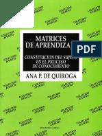 107192164-Matrices-de-Aprendizaje-ana-Quiroga.pdf