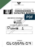 Concesión Puma 1