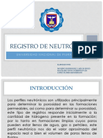 189424730-Registro-de-neutron.pptx