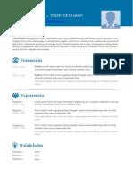 Plantilla-curriculum-vitae-completar-4.docx