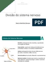 Aula 2 - Sistema Nervoso