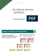 Aula 3 - Sistema Nervoso Divisão Autonomica