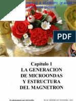 manual_de_reparacion_de_hornos_de_microondas.pdf