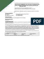 Ficha de Carategorización