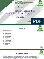 Informe Asesoria Homologación (Versión Ejecutiva)