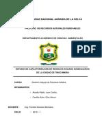 Informe de Caracterizacion Alcedo Castillo Term