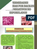 Enfermedades de Bacilus