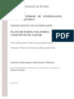 Mestrado - Enfermagem de Saúde Materna e Obstetrícia - Vânia Cristina Caldeira Paralta - Plano de Parto, Uma Forma Consciente de Nascer