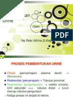 Proses Pbtkn Urine