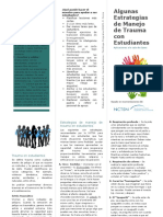 Brochure Estrategias Trauma Salon Clases