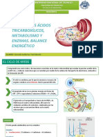 Expo Bioquímica