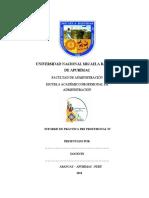 PLAN DE PPP IV 2018