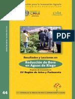 SISTEMA PARA REDUCIR LA CONCENTRACION DE BORO EN GUAS DE RIEGO.pdf