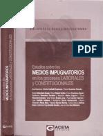 MEDIOS IMPUG EN LOS PLC.pdf