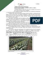 Folha 387 - Não antecipe a adubação do cafezal, adube na época certa.pdf