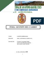 Gestion Al Cambio-Informe
