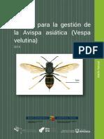Manual Avispa Asiatica.pdf