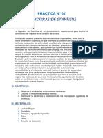 PRÁCTICA-N-5-de-fisiologia-animal.docx