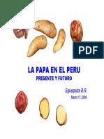 biblioteca_exposiciones_Papa_En_EL_Peru.pdf