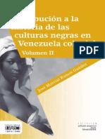 Culturas negras 2.pdf