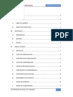Informe de Consolidacion Unidimensional