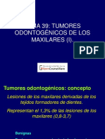 tumores odontogenicos.pdf