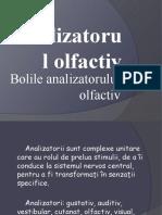 Analizatorul olfactiv