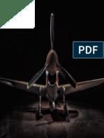 Avion de Pelea y de Guerra