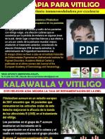 Fitoterapia Para Vitiligo