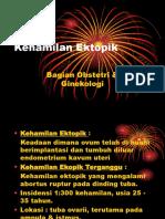 230075431 Kehamilan Ektopik Slide Ppt