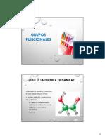 06_Grupos_funcionales.pdf