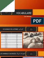 Vocabulaire Animaux