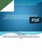 Diapositivas Del Proyecto de Investigacion