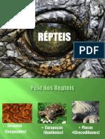 RÉPTEIS.pptx