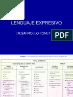 4_LENGUAJE EXPRESIVO_libro EL NIÑO QUE HABLA.ppt