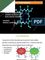 Metabolismo Del Hemo