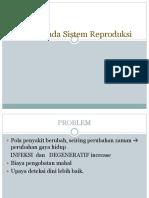 infeksi umum reproduksi.pdf