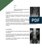 Patologias de Columna