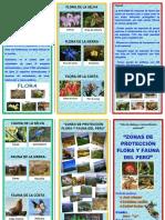 Flora y Fauna Del Peru